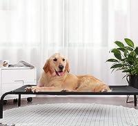 屋外の高架犬用ベッド、特大中小犬用の冷却犬用ベッド、キャンプやビーチ用の携帯用ペットベッド メッシュを備えた丈夫なサマーフレーム,XL