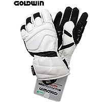 GOLODWINゴールドウィン「メンズスキーグローブ」G1801P