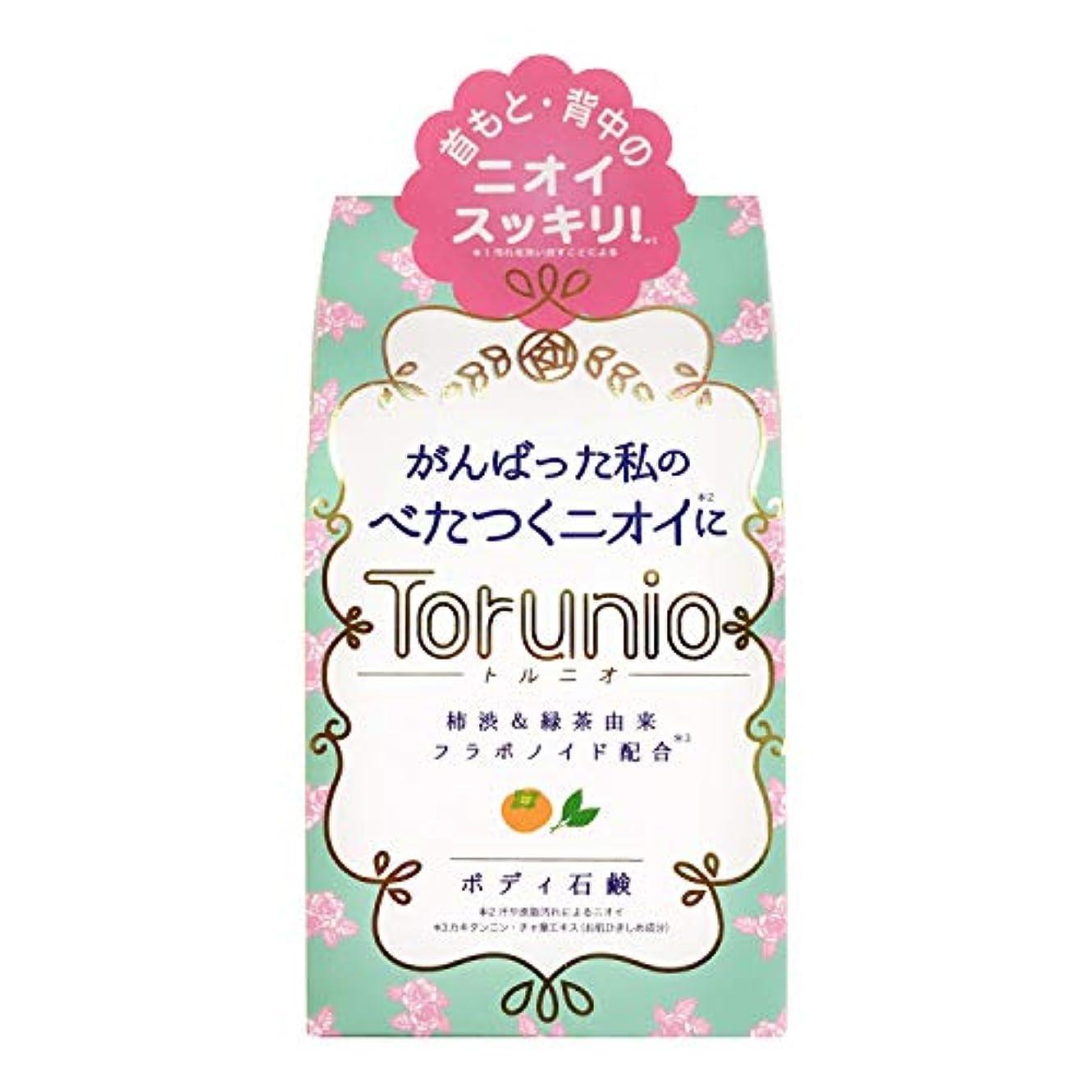 粘着性槍横にTorunio(トルニオ)石鹸 100g