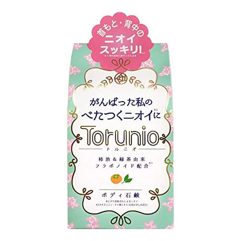 ガイド治す煩わしいTorunio(トルニオ)石鹸 100g