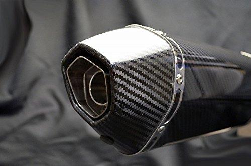 DUCATI Diavel(ディアベル) LCIカーボンエンドスリップオンマフラー