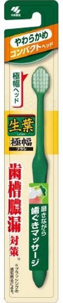 ぜいたく式前部生葉極幅ブラシ コンパクト やわらかめ × 10個セット