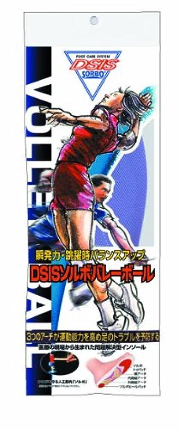 教育学革命火炎DSISソルボバレーボール Lサイズ(26.5~27.5cm)パープル