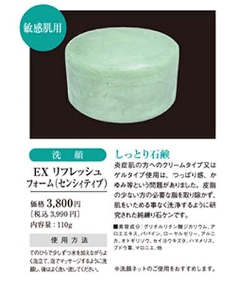 栄光心配する褐色リセル EXリフレッシュフォーム(センシィティブ) 110g 【R-Cell(リセル)】