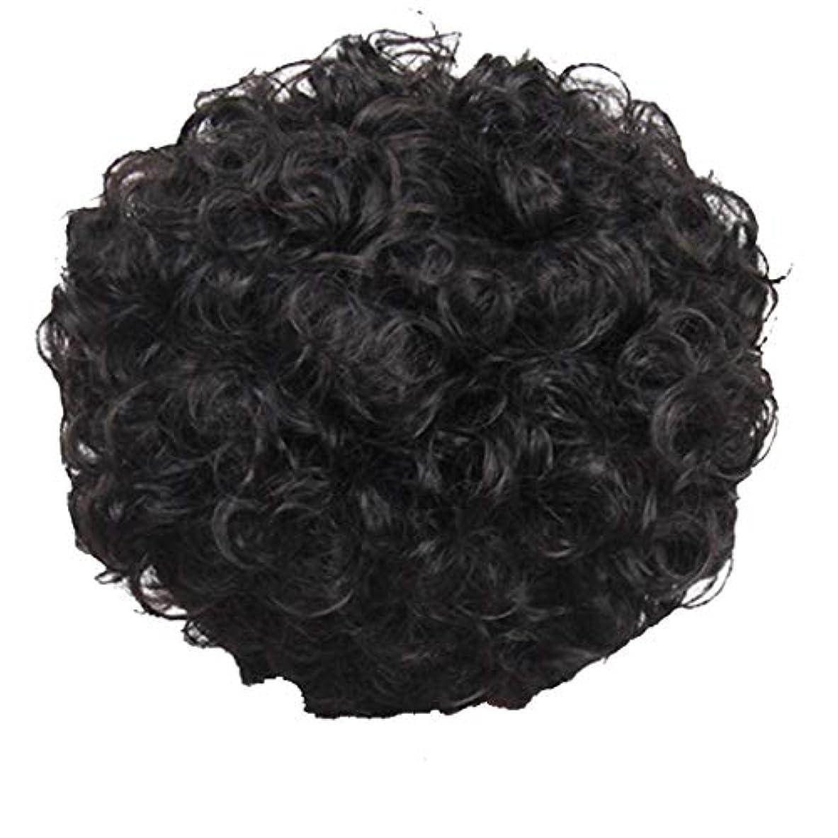 固めるパドルスクラップブックかつら、女性、短い髪、巻き毛、かつら、エルフカット、かつらキャップ、27cm