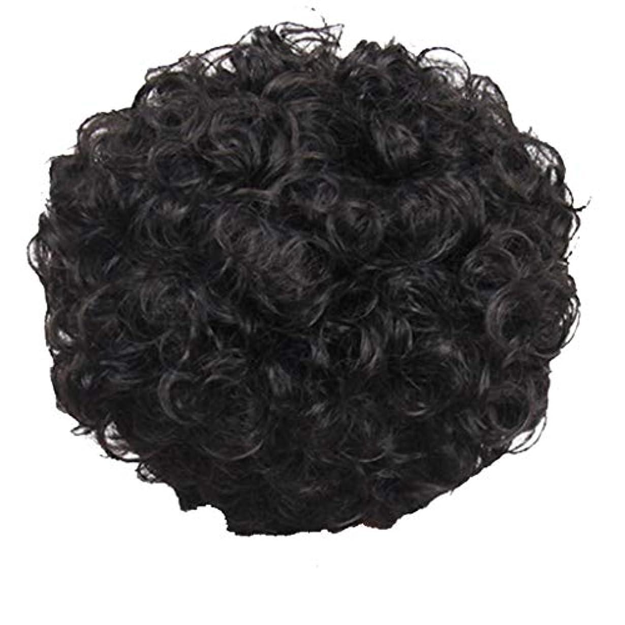 乳剤マイナーエイズかつら、女性、短い髪、巻き毛、かつら、エルフカット、かつらキャップ、27cm