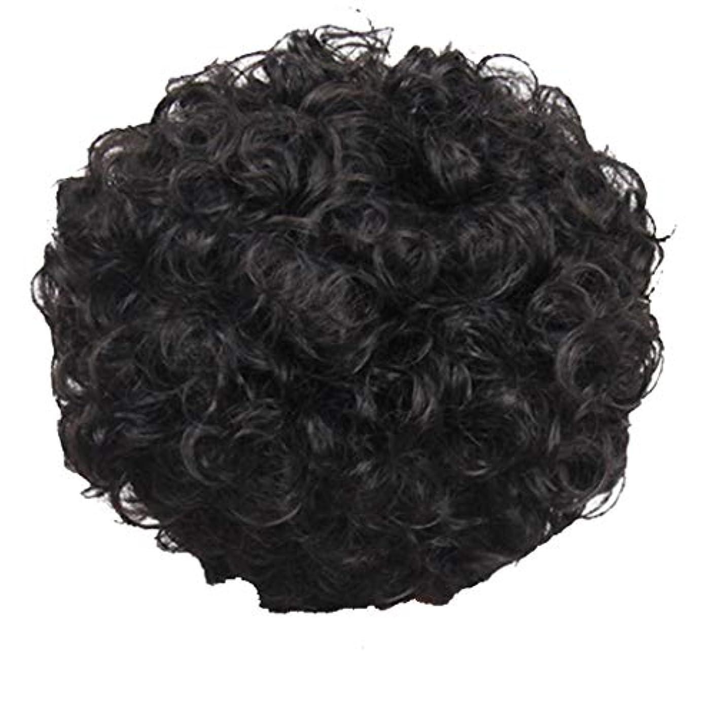 干渉動物褒賞かつら、女性、短い髪、巻き毛、かつら、エルフカット、かつらキャップ、27cm