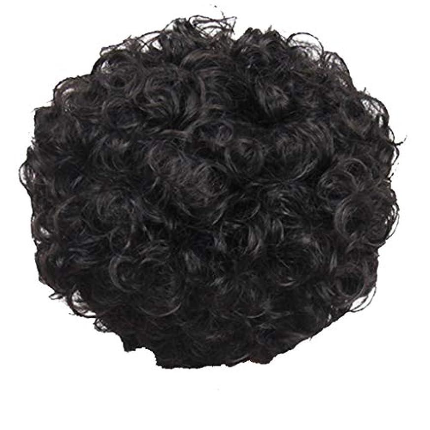 蒸発シーボードやさしいかつら、女性、短い髪、巻き毛、かつら、エルフカット、かつらキャップ、27cm