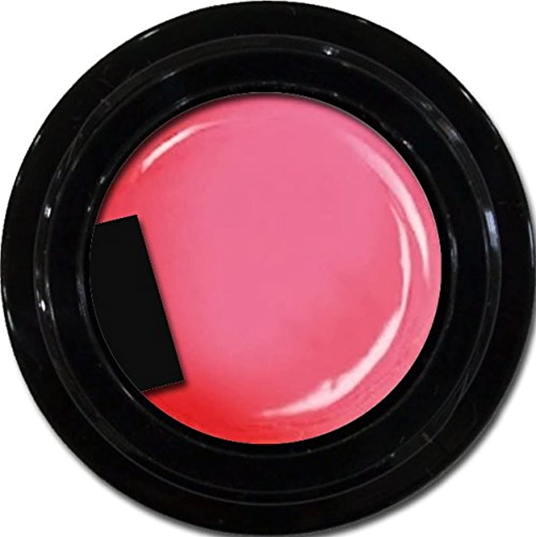 伝染病孤独罪悪感カラージェル enchant color gel M213 MistyPink 3g/ マットカラージェル M213ミスティーピンク 3グラム