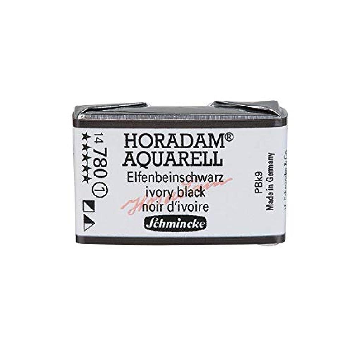 剣ビジネスおしゃれなSchmincke Horadam シュミンケ ホラダム 透明水彩絵具 フルパン コバルトブルーライト