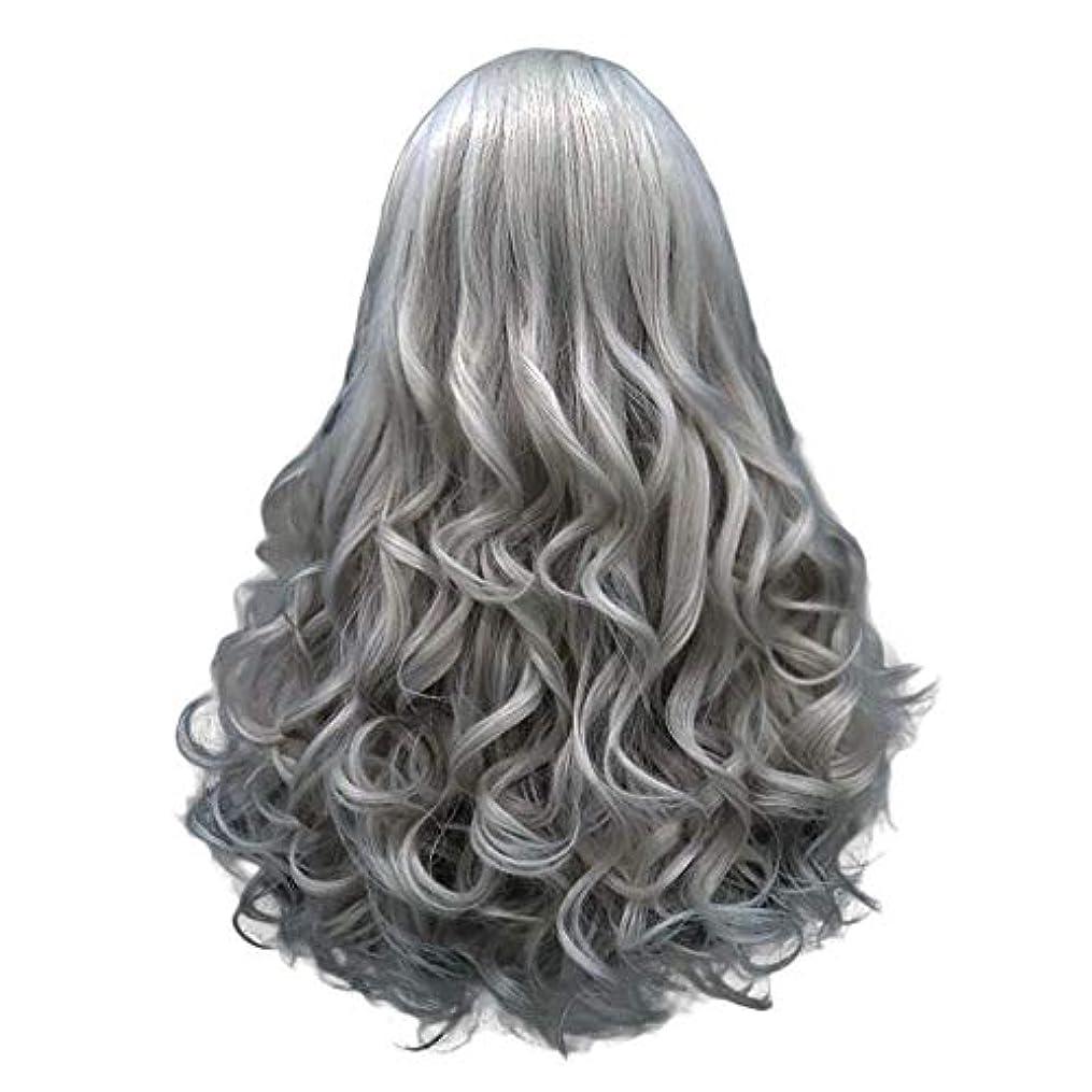 帝国ヒューズスキル長い巻き毛の混合カラーセクシーなグラデーショングレーパーティーウィッグ