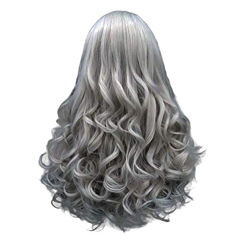 確保する試す静める長い巻き毛の混合カラーセクシーなグラデーショングレーパーティーウィッグ