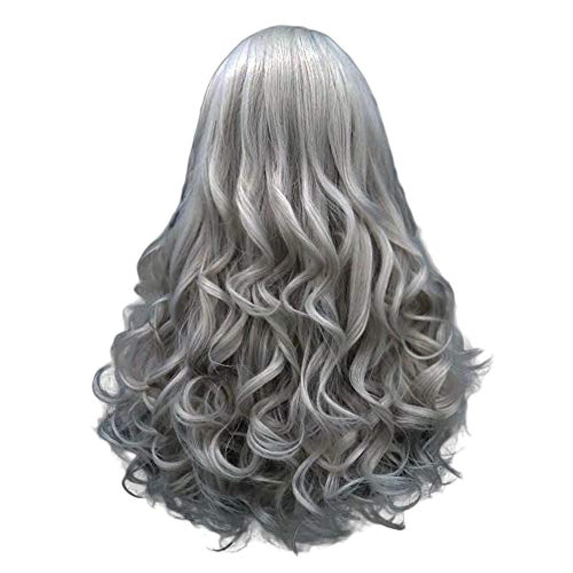 見る耐久標準長い巻き毛の混合カラーセクシーなグラデーショングレーパーティーウィッグ