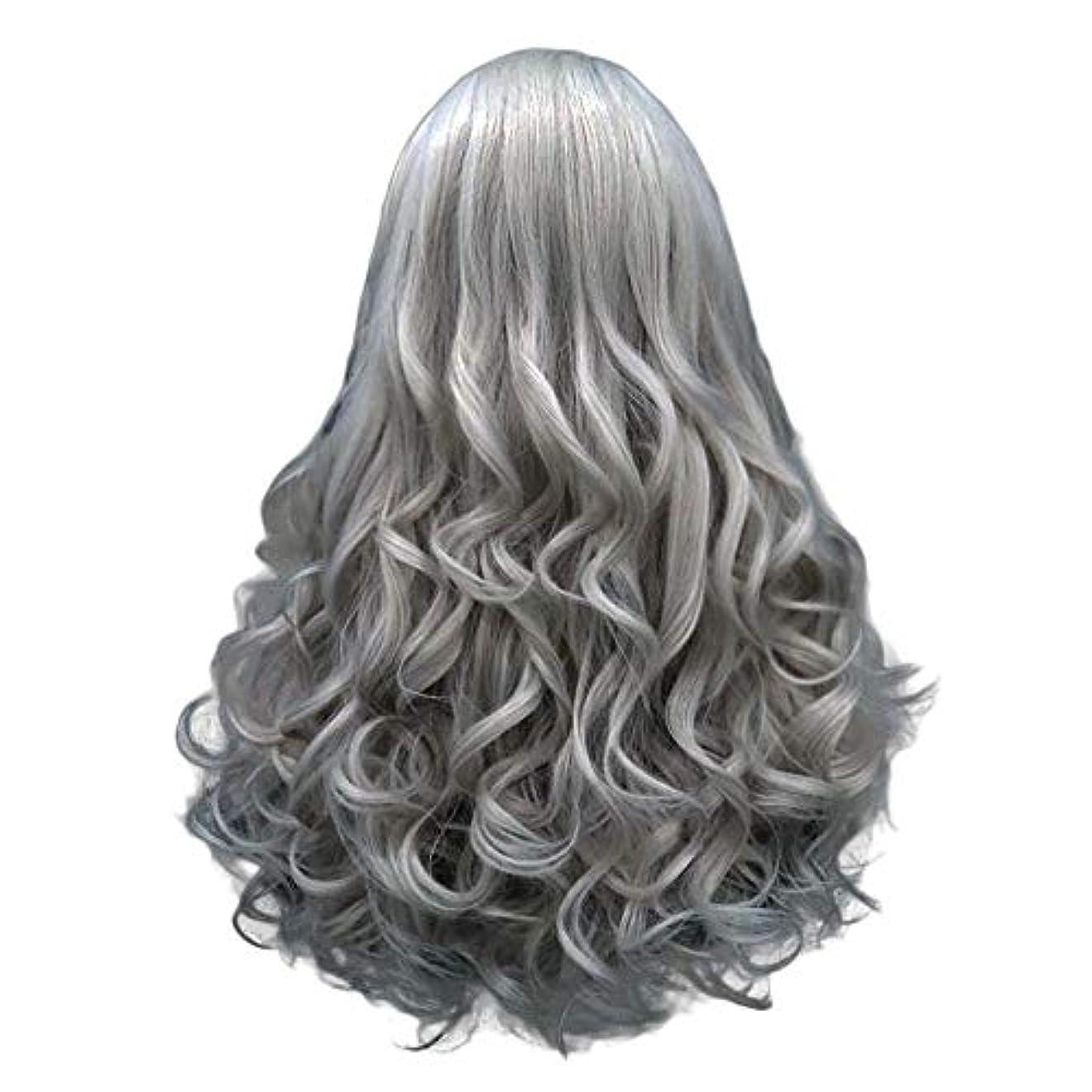 長い巻き毛の混合カラーセクシーなグラデーショングレーパーティーウィッグ