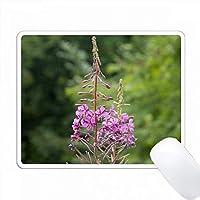 美しいピンクの花 PC Mouse Pad パソコン マウスパッド