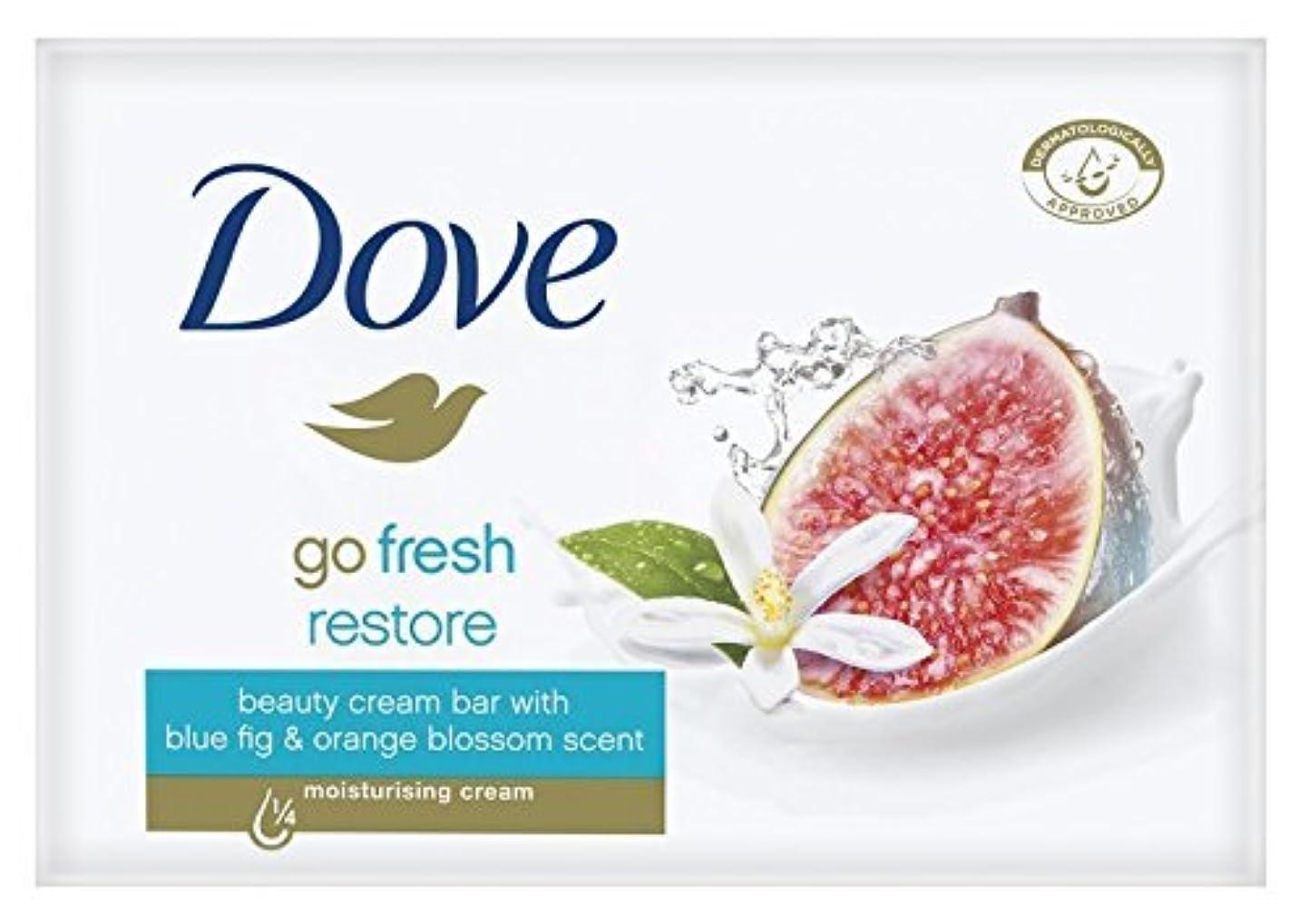 雨大きいそこからDove Go Fresh Restore Beauty Bar Soap 3.5 Oz / 100 Gr (Pack of 12 Bars) by Dove [並行輸入品]