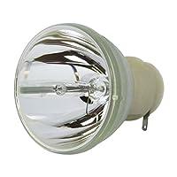 LYTIO エコノミー Optoma SP.8SH01GC01 プロジェクターランプ用 (電球のみ)