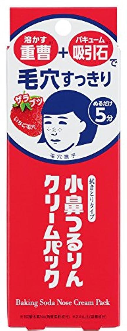 描写幻想円周毛穴撫子 小鼻つるりんクリームパック 15g
