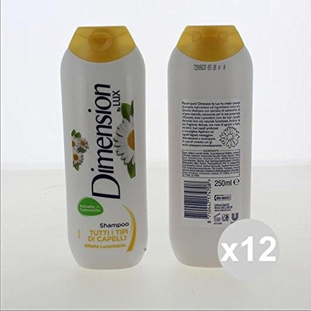 もし詩ワイン12次元シャンプー2 in1 250カモミールシャンプーとコンディショナーヘアケア製品のセット