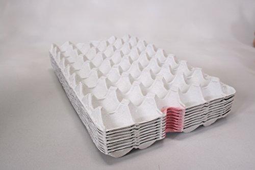 タマゴトレー(紙製モールドトレー)54卵(100枚入り)