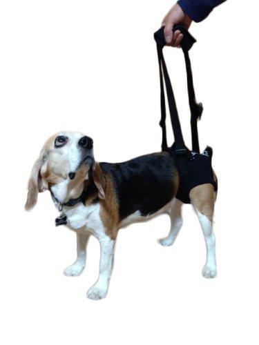 [ペット介護]通気性バッグン!メッシュ素材後肢用歩行補助ハーネス M