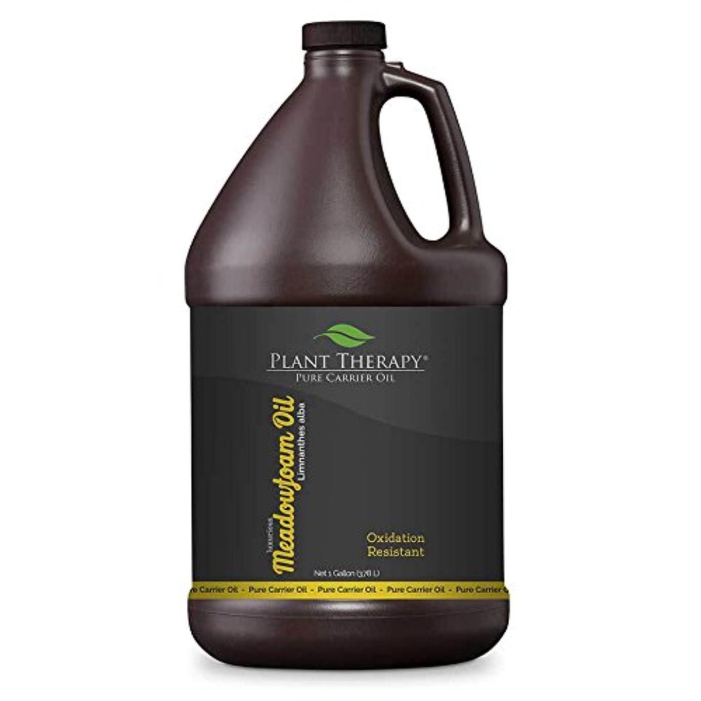 グリル禁止ぶどうメドウフォームキャリアオイル。 1ガロン。アロマセラピー、エッセンシャルオイルやマッサージ用基油。