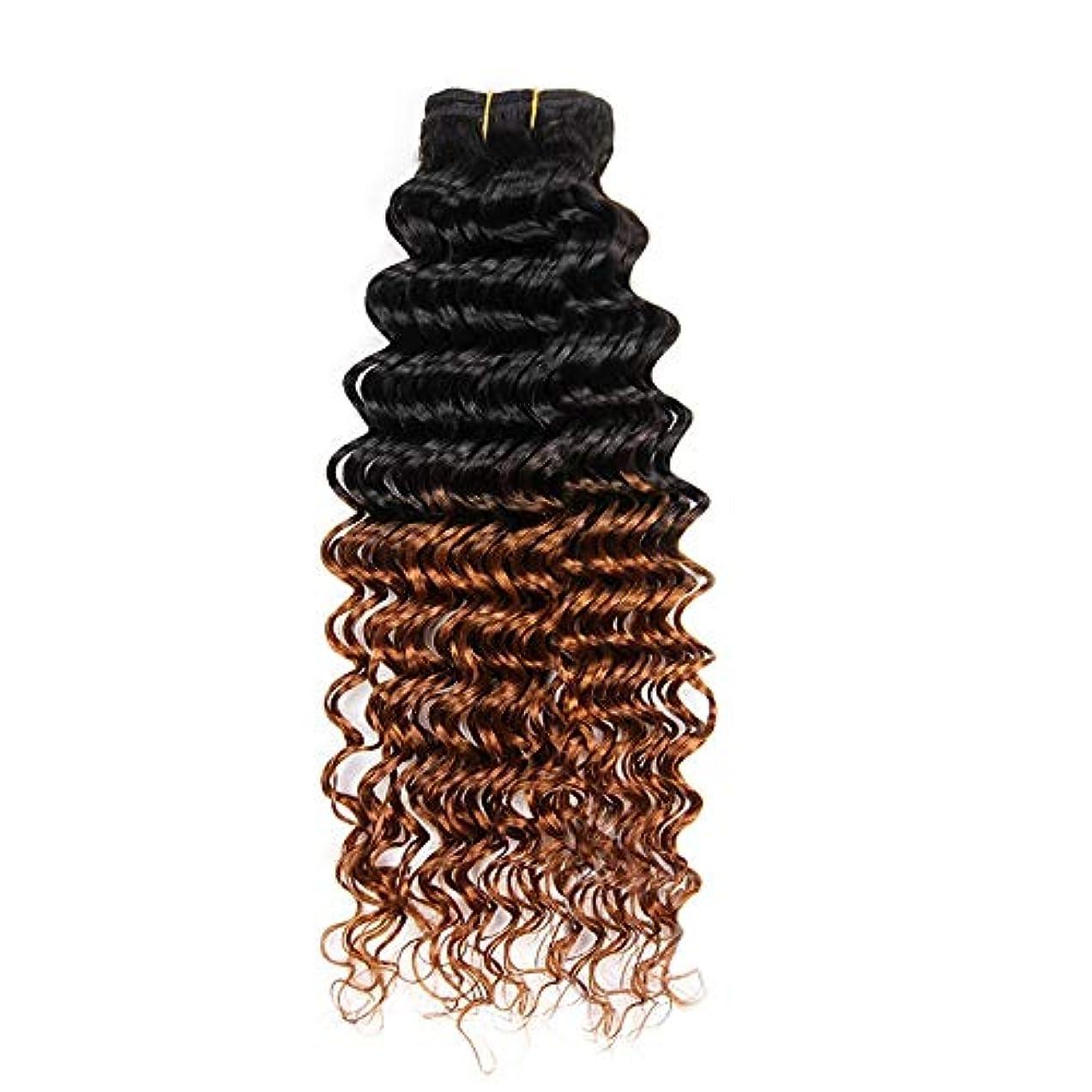 自動動かす上がるWASAIO 100%人毛横糸ディープウェーブエクステンションクリップ裏地なし髪型カーリーバンドルブラック1つのバンドルを着色ブラウン2トーンに (色 : ブラウン, サイズ : 22 inch)