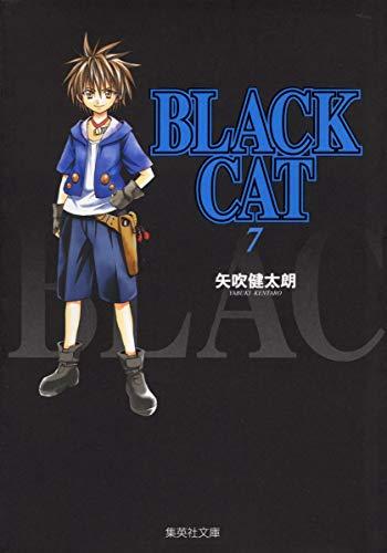 BLACK CAT 7 (集英社文庫(コミック版))の詳細を見る