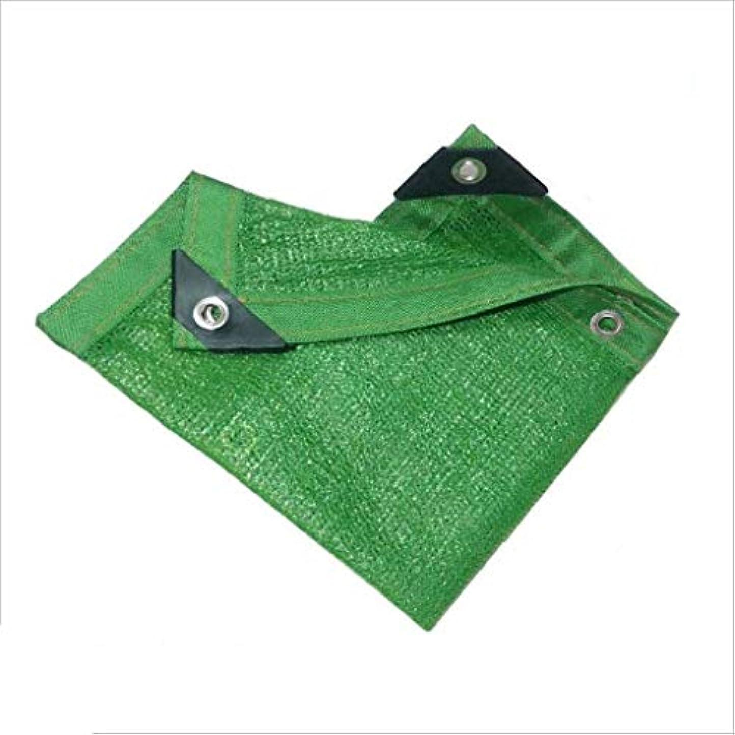 知覚火山学者戦闘日よけネット、日よけの帆、日焼け止めネット、バルコニー、花、植物、庭、芝生、プール、6 Needles Edged、Fleshy Sunshade net、緑 ZHAOFENGMING (Color : Green, Size : 5 x 8M)