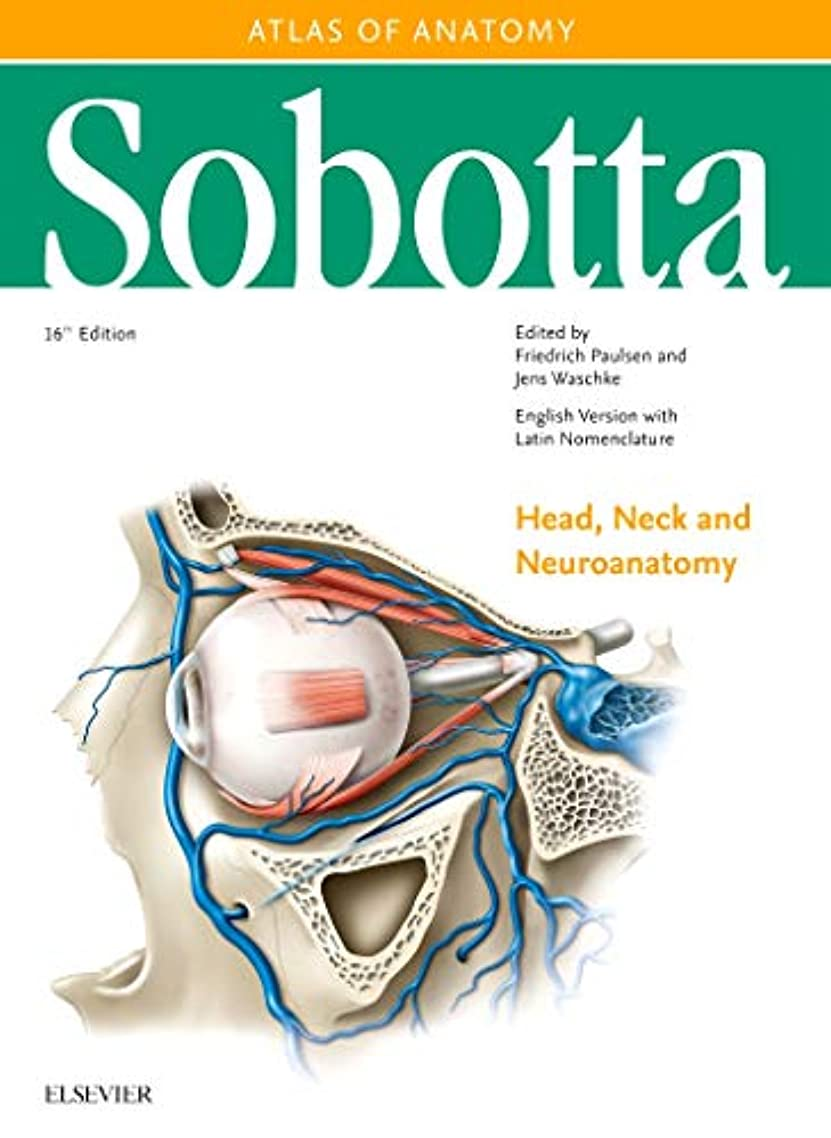件名メジャーアーティファクトSobotta Atlas of Anatomy, Vol. 3, 16th ed., English/Latin: Head, Neck and Neuroanatomy, 16e