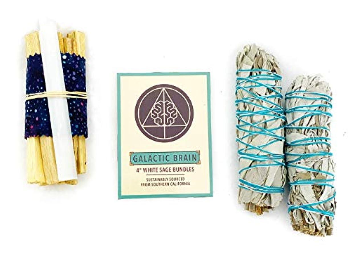 売るリンスGalacticBrain 4インチ カリフォルニアホワイトセージスマッジバンドル/スマッジスティックキット ご自宅をきれいにしましょう。 瞑想/ヨガの練習を強化。 振動を上げましょう。 パロサントスティック 2本 セレナイトクリスタル