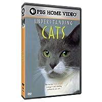 Understanding Cats [DVD] [Import]