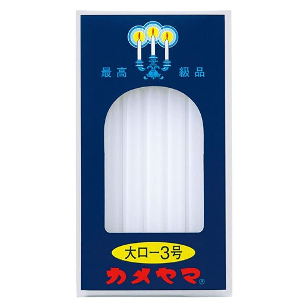 魔女減衰憲法大ロ-ソク<3号> 225g