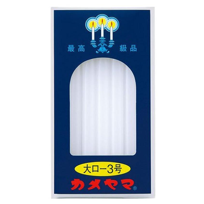 オゾン時間メンテナンス大ロ-ソク<3号> 225g