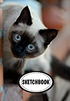 Sketchbook: Cat; Journal / Diary