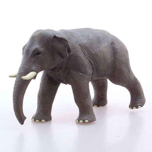 75303 アジアゾウ ビニールモデル