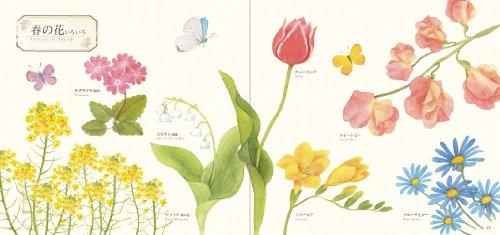はじめての水彩画 12か月の花スケッチ