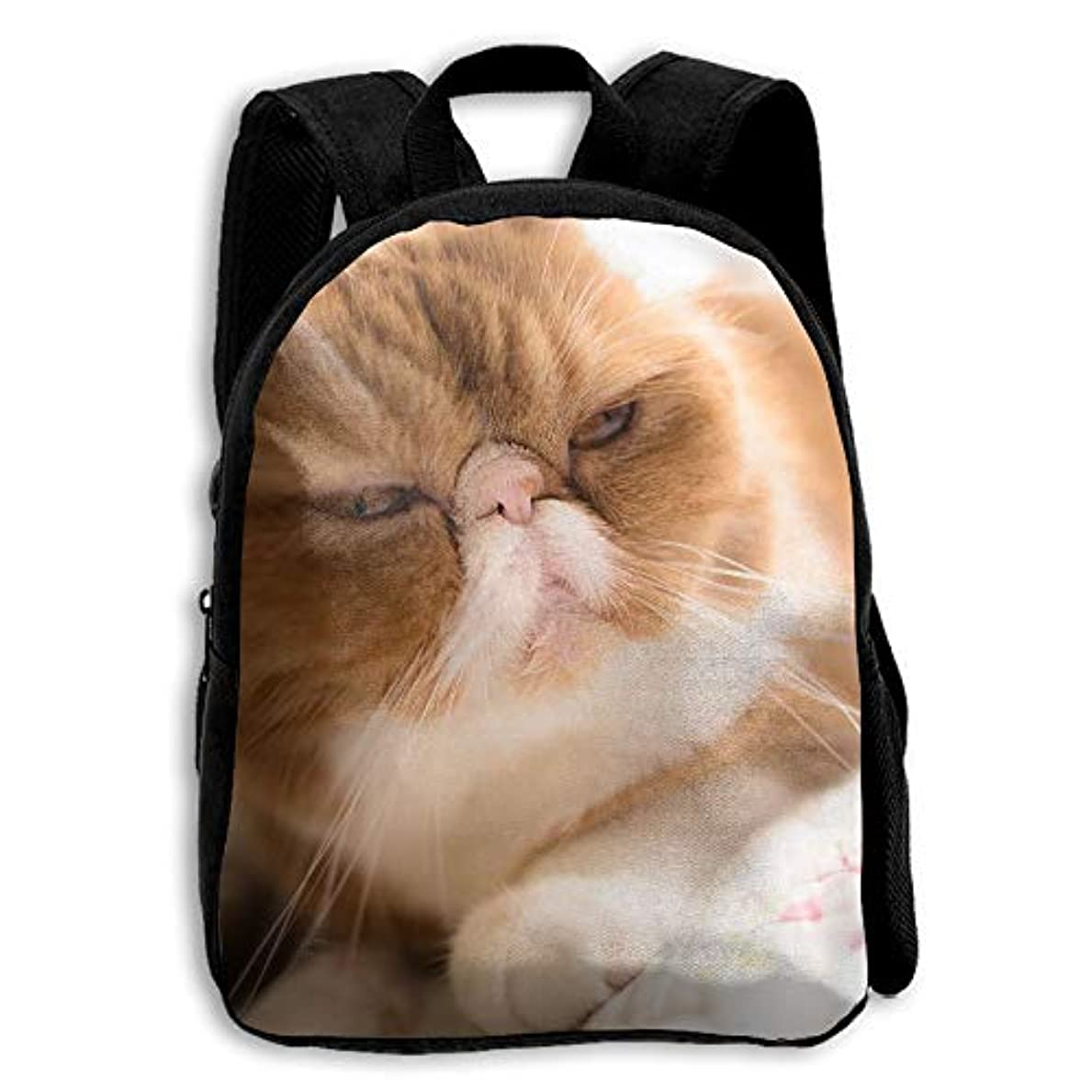 中級楽しむ空白キッズ バックパック 子供用 リュックサック 悲しいキャット猫 ショルダー デイパック アウトドア 男の子 女の子 通学 旅行 遠足