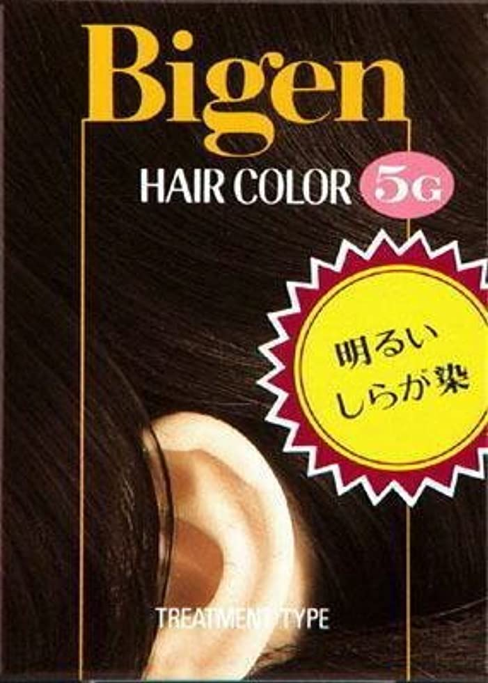 オーバーラン陰気締めるビゲン ヘアカラー 5G 深い栗色 × 10個セット