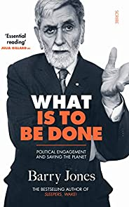 What Is to Be Done: political engagement and saving the planet