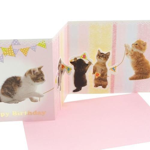 【Happy Birthday】仔猫ロープ/写真《GS-125》バースデーPop-Upカードお誕生日おめでとうカード通販