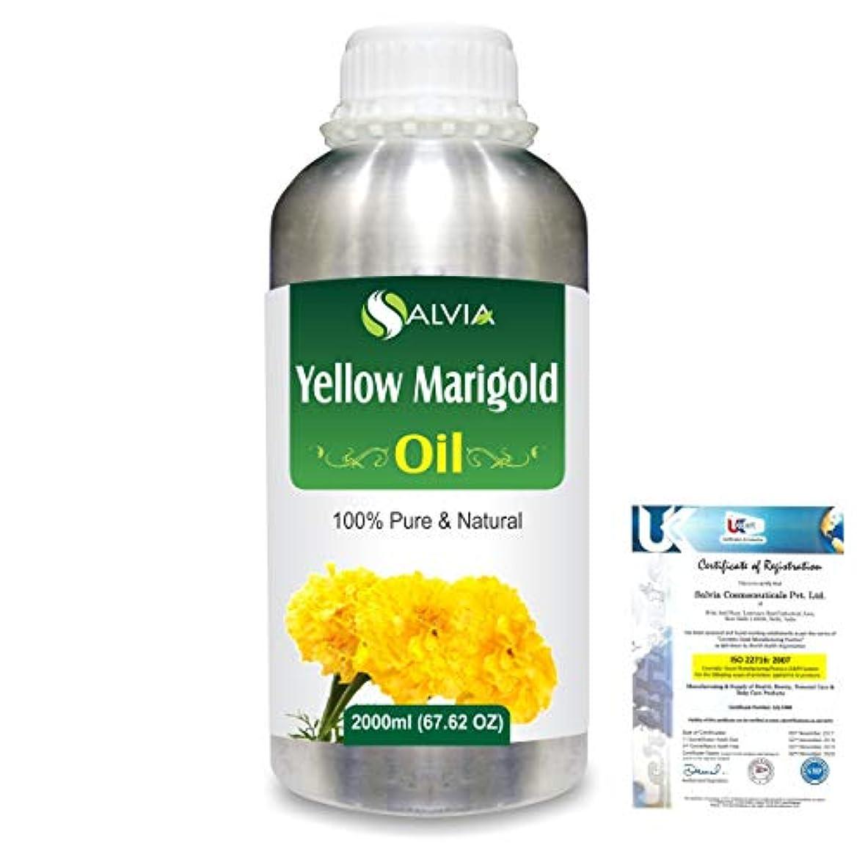 上記の頭と肩優しい追い付くYellow Marigold (Tagetes) 100% Natural Pure Essential Oil 2000ml/67 fl.oz.