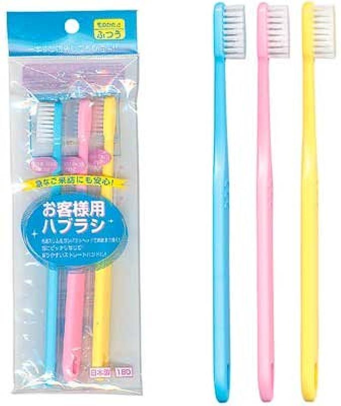 フェロー諸島抽象化カロリーお客様用歯ブラシ(3P) 【まとめ買い12個セット】 41-006