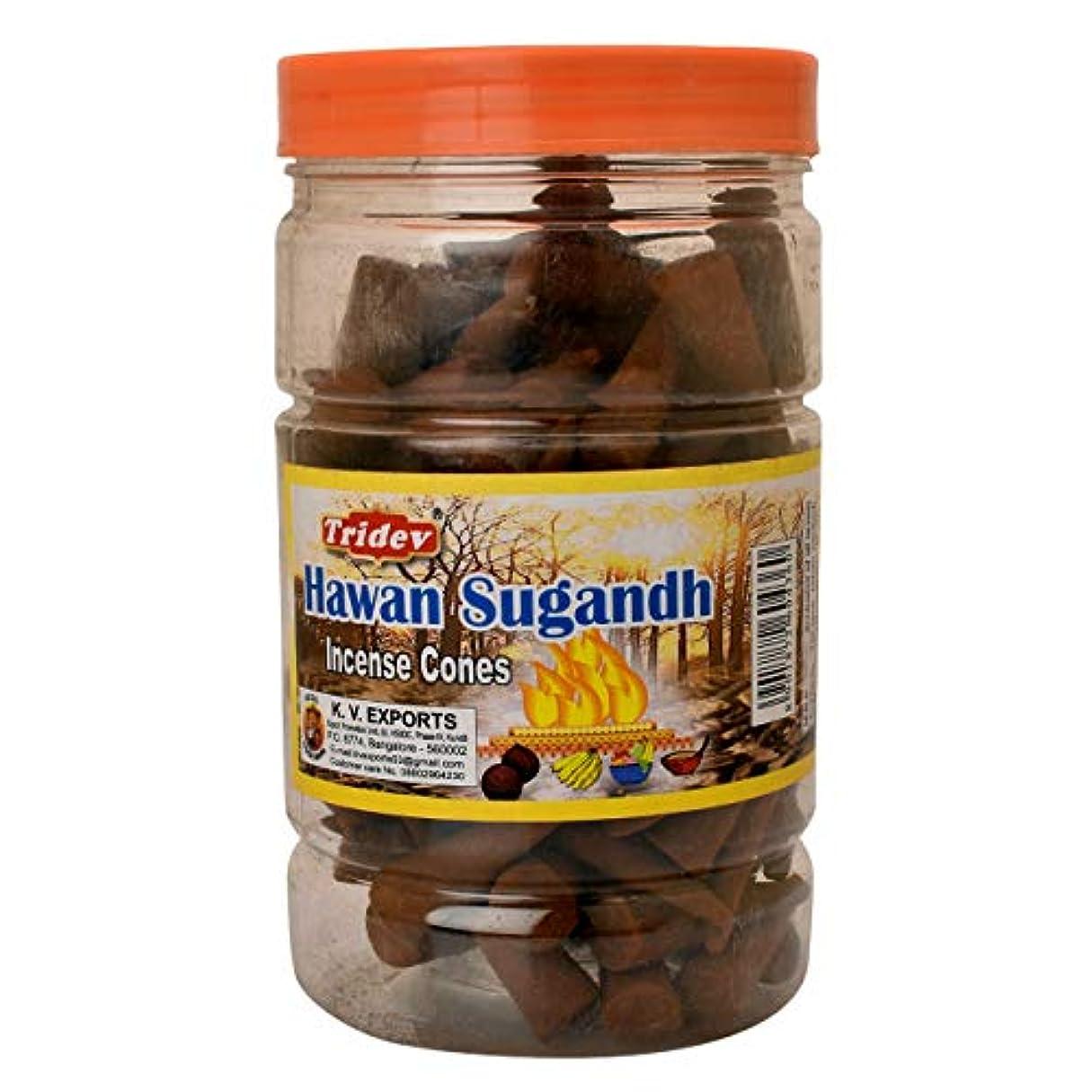 医薬品割合一生Tridev Hawan Sugandh Incense Cones Jar 225グラムパック