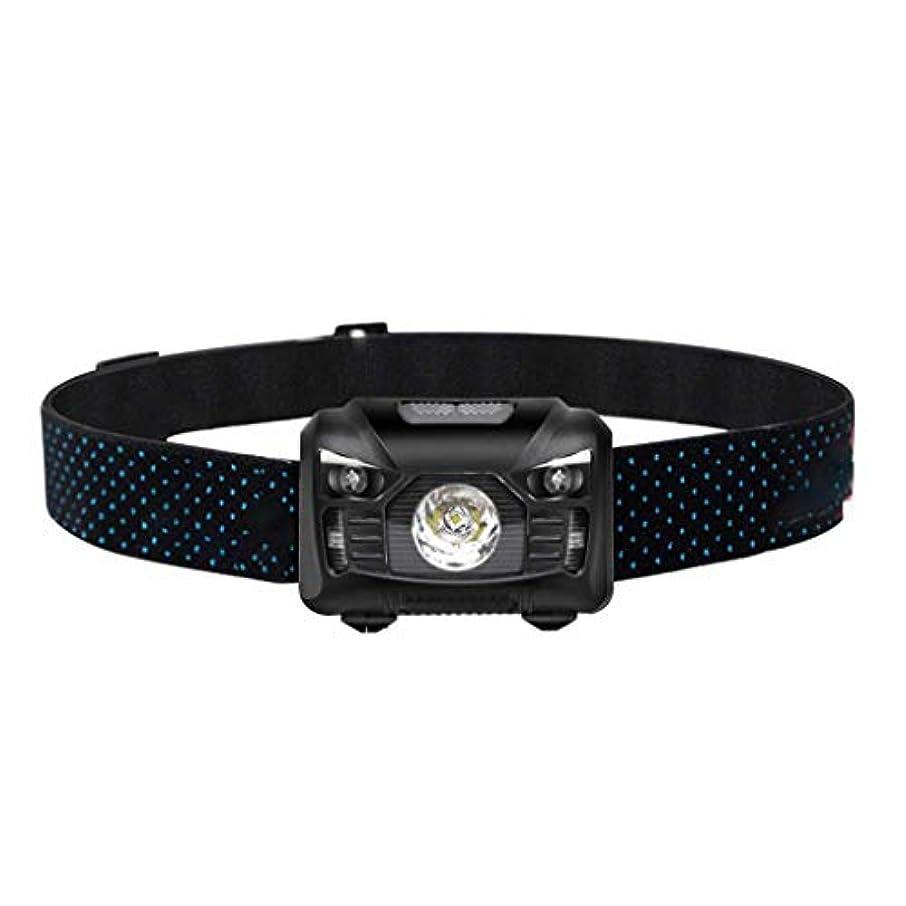 予防接種する普通に実現可能YDXYZ LEDヘッドトーチ、釣りキャンプランニングハイキングや読書のための屋外のスーパーブライト充電式防水自動誘導ヘッドライト