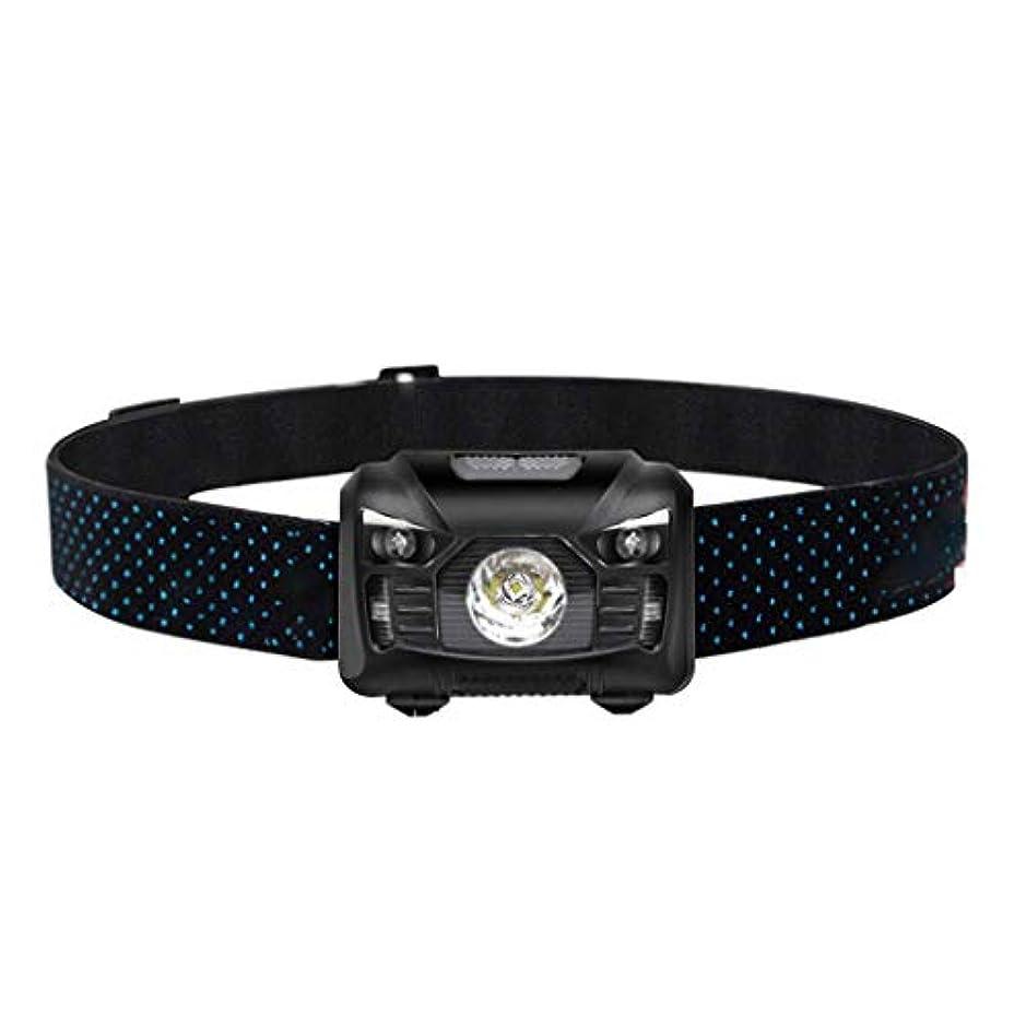 ポーズたらいムスタチオYDXYZ LEDヘッドトーチ、釣りキャンプランニングハイキングや読書のための屋外のスーパーブライト充電式防水自動誘導ヘッドライト