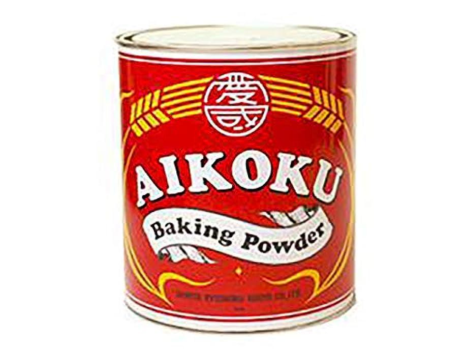 掘る気づかない重要愛国 ベーキングパウダー 赤 2kg  プレミアム(アルミ?ミョウバン不使用)推奨品