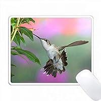 Ruby-throated Hummingbird女性 PC Mouse Pad パソコン マウスパッド