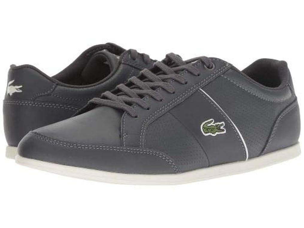 恐ろしい煩わしい落ち込んでいるLacoste(ラコステ) レディース 女性用 シューズ 靴 スニーカー 運動靴 Seforra 318 2 P CAW - Dark Grey/Off-White [並行輸入品]