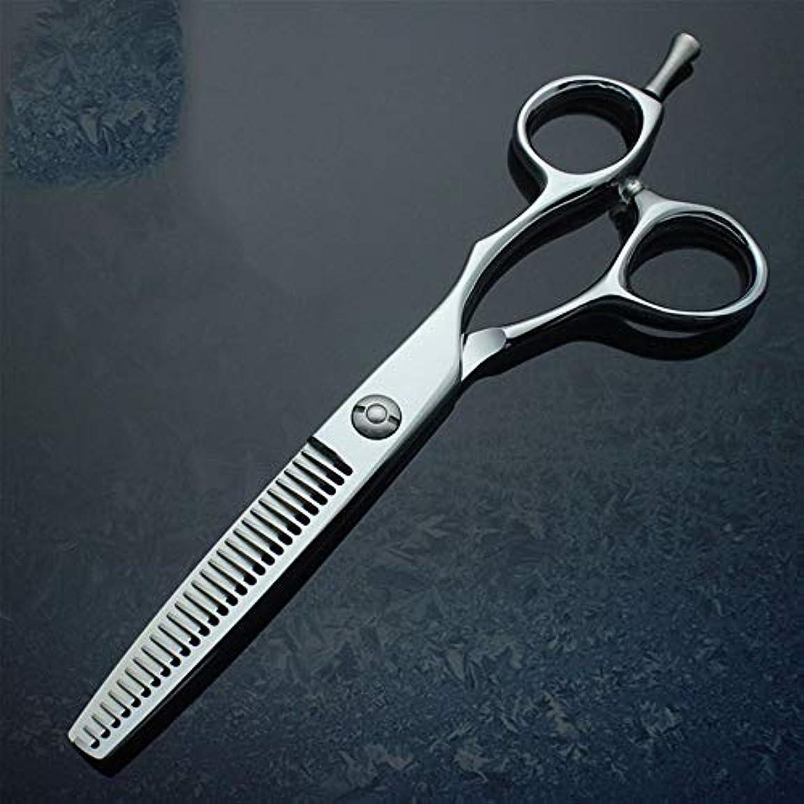 ワゴンフォーマル松明理髪用はさみ 6インチプロフェッショナルハイエンドパイプテールネイルハンドル理髪はさみ間伐歯はさみヘアカットはさみステンレス理髪はさみ (色 : Silver)